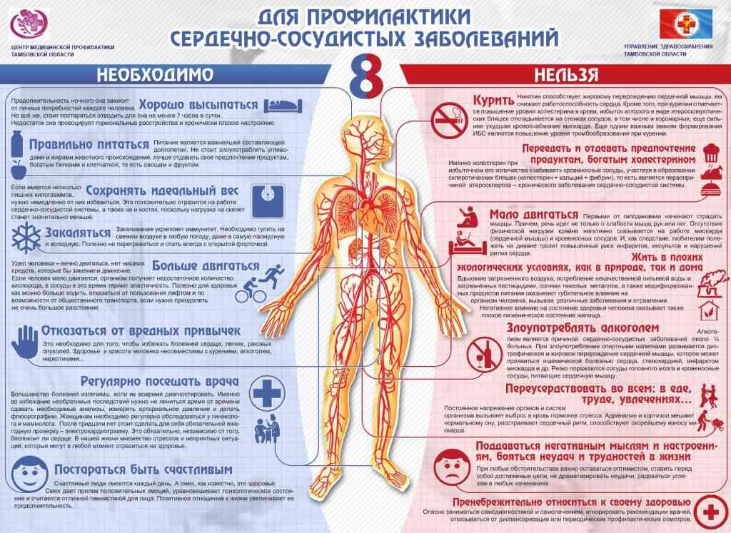 профилактика сердечно -сосудистых заболеваний